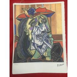 Dettagli su  Picasso Litografia 38.5 x 28.5 cm Firma Timbro Spadem 1995 edizione 250 PIC099