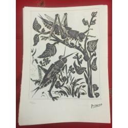 Dettagli su  Picasso Litografia 38.5 x 28.5 cm Firma Timbro Spadem 1995 edizione 250 PIC001