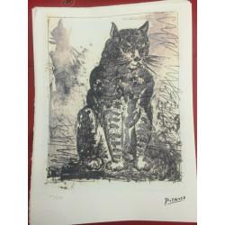 Dettagli su  Picasso Litografia 38.5 x 28.5 cm Firma Timbro Spadem 1995 edizione 250 PIC007
