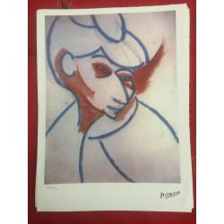 Dettagli su  Picasso Litografia 38.5 x 28.5 cm Firma Timbro Spadem 1995 edizione 250 PIC151