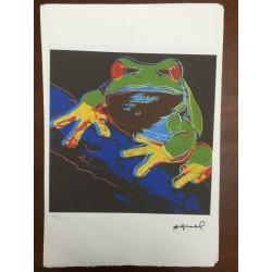 Dettagli su  Andy Warhol Litografia 57 x 38 Arches Timbro Secco Israel Castelli AN187