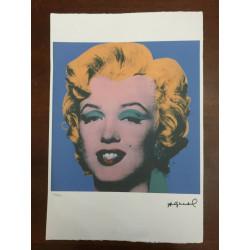 Dettagli su  Andy Warhol Litografia 57 x 38 Arches Timbro Secco Israel Castelli AN477