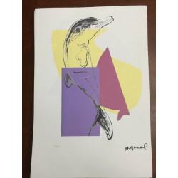 Dettagli su  Andy Warhol Litografia 57 x 38 Arches Timbro Secco Israel Castelli AN014
